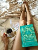 Cómo leer a los grandes sin morir en el intento