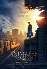 Evento para fans de Animales Fantásticos